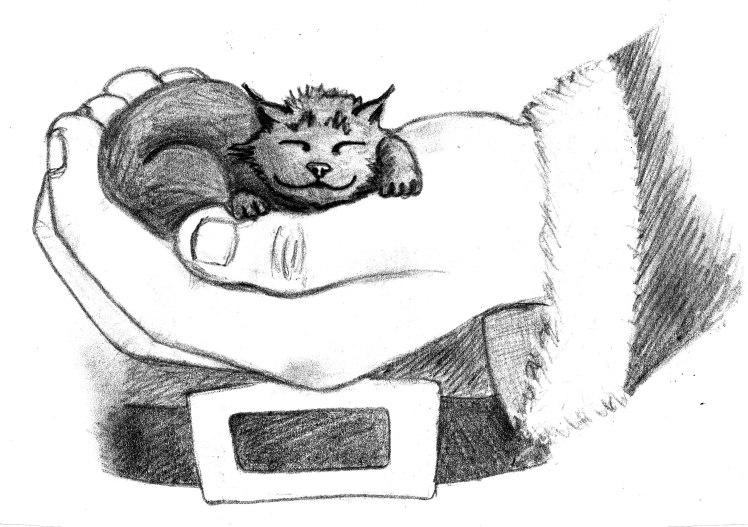 Santa holding kitten